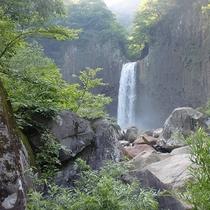 *【周辺/苗名滝】日本の滝百選にも選ばれている苗名滝では迫力満点の水しぶきを見ることができます。