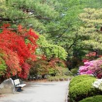 周辺_沼田公園