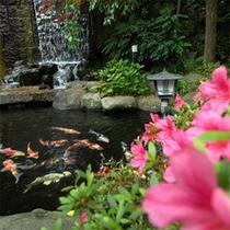 *庭園内「池」