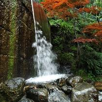 *庭園内「滝」