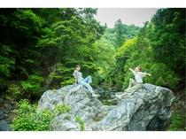 ハート形の幸運の猿飛岩