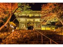 秋の神護寺 夜間拝観