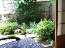 お部屋から坪庭を眺める!