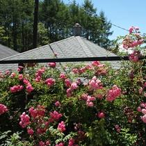 *【外観(春)】100種類のバラと四季折々の草花が皆さまをお出迎え。