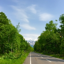 ・青い池や白金温泉に繋がる道路からの風景・