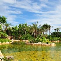 シギラ黄金温泉 ジャングルプール