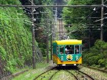 ■観光:高尾山へお車で40分。自然豊かです♪