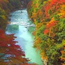 【秋の眺望例】葉が紅く色付きはじめる季節には、渓流美ならではの景色が広がります。