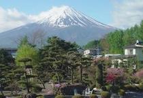 富士山 景色