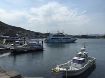 函館港と遊覧船