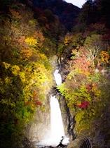 【秋】赤水の滝ライトアップ 2016年11月