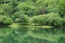 大尻沼湖畔のさわやかな季節