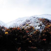 秋から冬(景色)