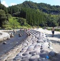 井崎河川公園