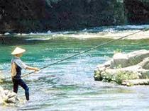 飛騨の清流馬瀬川のほとり、馬瀬川の鮎は日本一に輝きました①