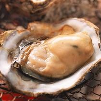 食べ放題牡蠣