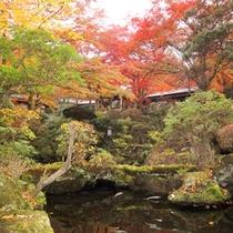 *2間続き・1階「松」赤・黄色・緑とコントラストが美しい、庭園の秋景色。