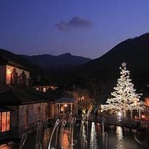 *箱根ガラスの森美術館 Xmasシーズンはライトアップ♪美しいイルミにうっとり