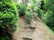 中庭「階段」