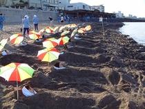 砂むし風景・海岸
