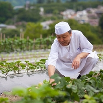 *【和食担当の井口総料理長】自家菜園に並ぶお野菜の種類や素材を吟味し、季節の献立を考えていきます