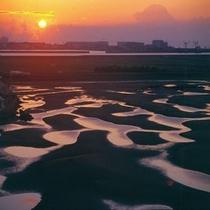 新舞子浜の干潟