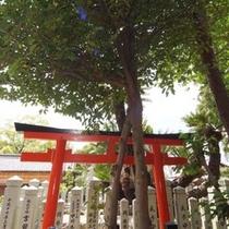 【周辺観光】 賀茂神社『連理の榊』 (車で約15分)