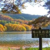 【鴫の谷地沼】一周1.2㎞の散策道があり、山桜・水芭蕉・蓮華つつじ・紅葉と、季節毎の花々が楽しめます