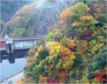 竜神峡の紅葉