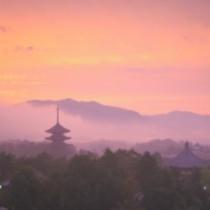 興福寺 朝焼け風景