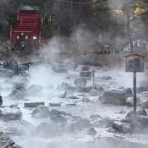 【西の河原公園】湧き出た温泉によって、温泉の池が自然とできました!池ごとに名もあり。