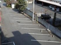 裏駐車場2(無料)