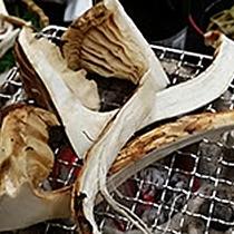 *旬の松茸を口に入れれば香りが広がる