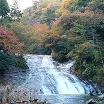 *粟又の滝(秋)