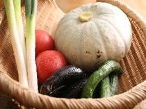 ①料理に使用する野菜は契約農家から採れたてが届きます。(一例)