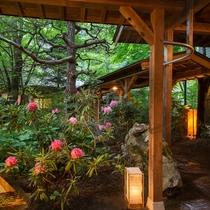 本館玄関横の庭園と石楠花
