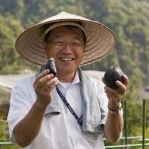 花月畑では社長を筆頭に、野菜作りに奮闘中です