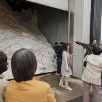 「こころ号」雨天コースの雪蔵見学。積まれた雪に圧巻。