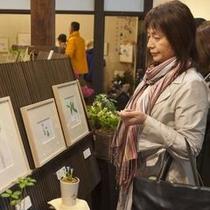「こころ号」雨天コースの野の花館は女性に人気です。