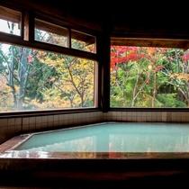 【丸太造りの温泉浴場】秋は赤や黄色に色づく紅葉を眺める贅沢な時間になります