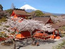 ■観光:富士宮は自然いっぱい!