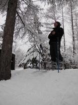 庭のスキー