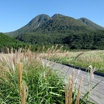豊かな自然に恵まれた九重。四季折々の景色がお愉しみいただけます。