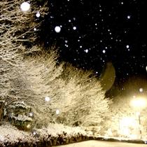 冬は幻想的な雪景色がご覧いただけますよ。