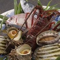 脂が乗った旬の魚介類の美味しさを堪能してください。(一例)