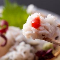 食欲を刺激する梅肉との相性◎鱧の湯引き(一例)