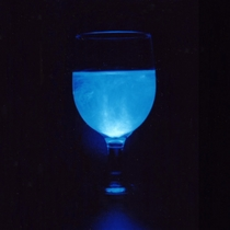 青白く幻想的な光を放つ海ホタルを観賞 海ホタルショー(一例)