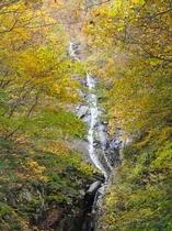 氷ノ山・布滝