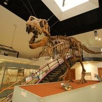 【神流町恐竜センター】当館から車で40分。大迫力の全身骨格標本やライブシアター、体験もできます。