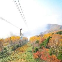 秋の竜王ロープウエイ